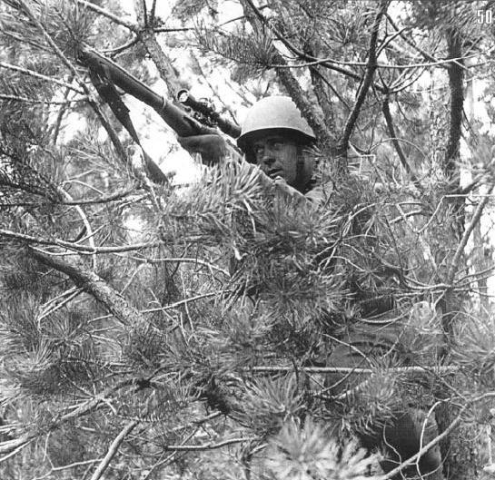 Снайпер Ф.И. Федоров в засаде, личный счет – 28 немцев. Июль, Юго-Западный фронт