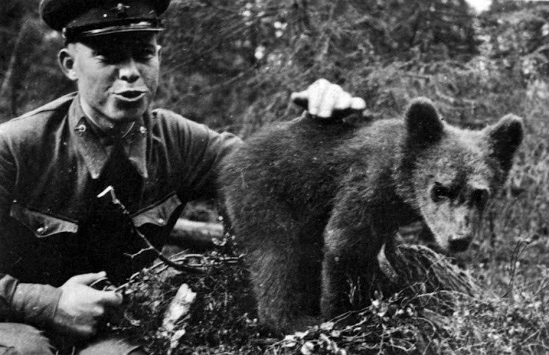 Мурманская область, Карельский фронт, 1941 год.