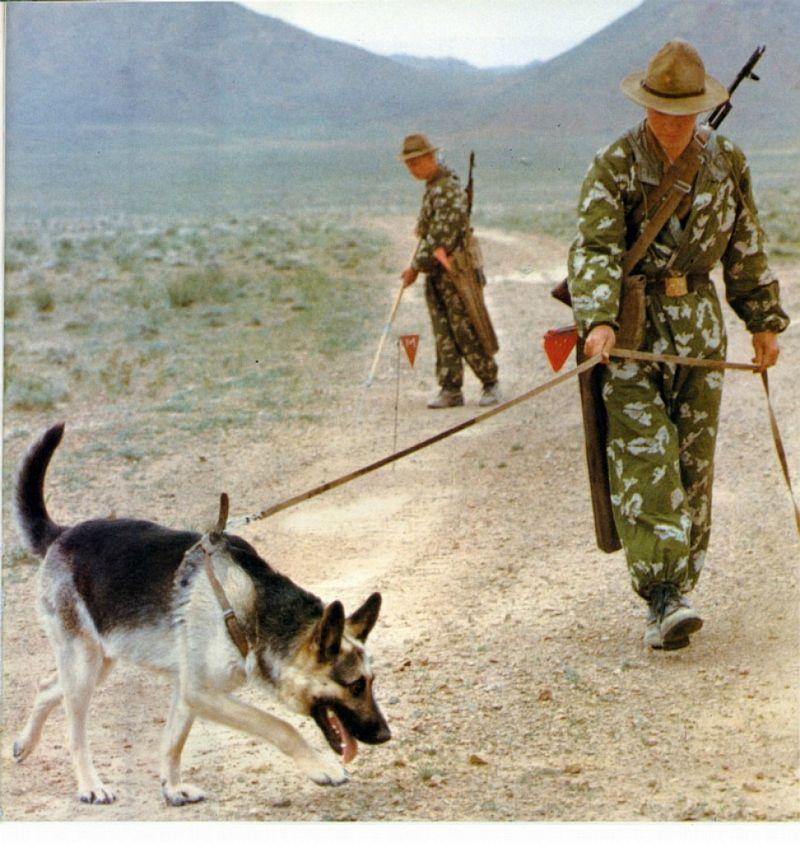 afgan002