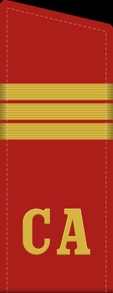 Как появились воинские звания