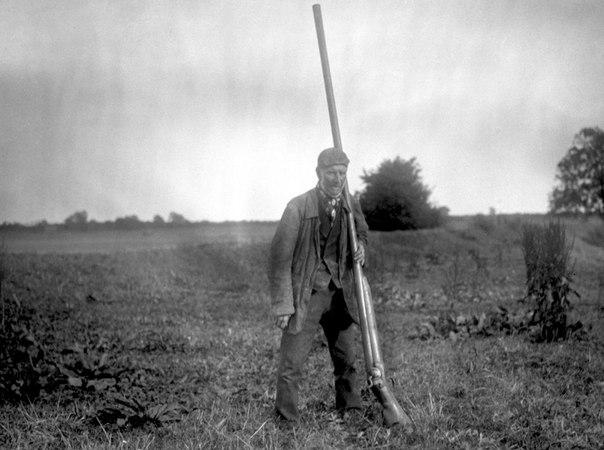 Ружьё для начинающего охотника