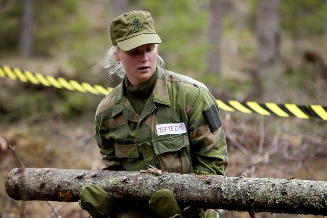 Skromnoe-obayanie-norvezhskojj-armii2