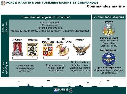 Морские фузилеры и коммандос Франции
