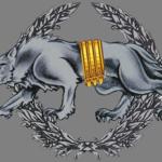 Оборотень, хорунжий и крест Богуна — новое лицо украинской армии