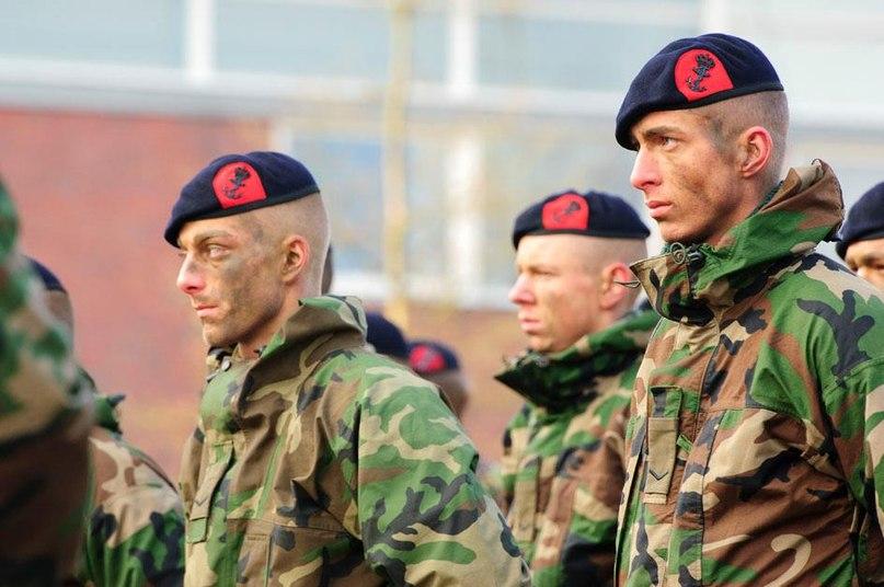 Королевская морская пехота Нидерландов