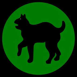 81-я дивизия Wildcats